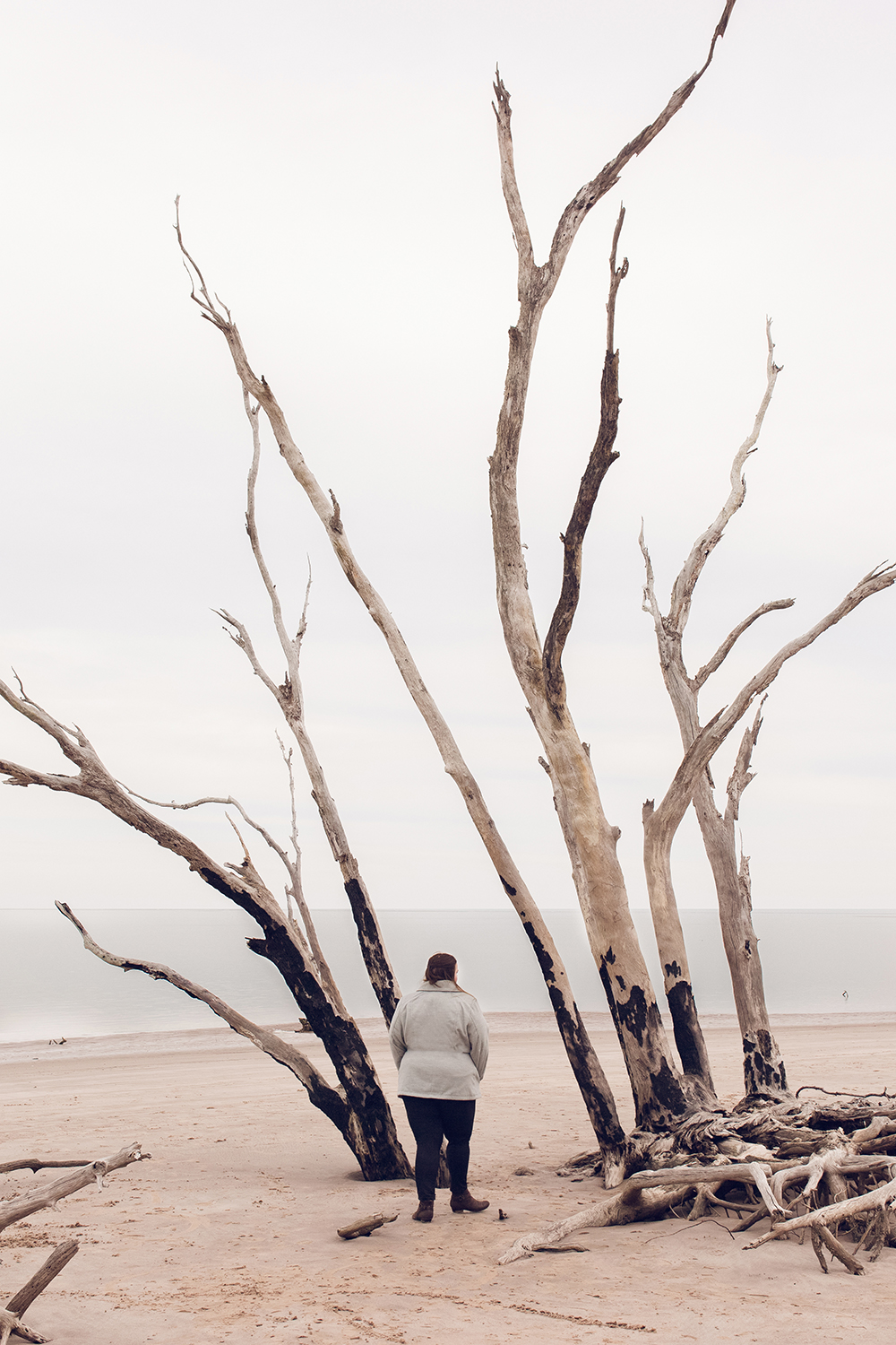 Cool spots for photos in Jacksonville | Driftwood beach at Big Talbot State Park